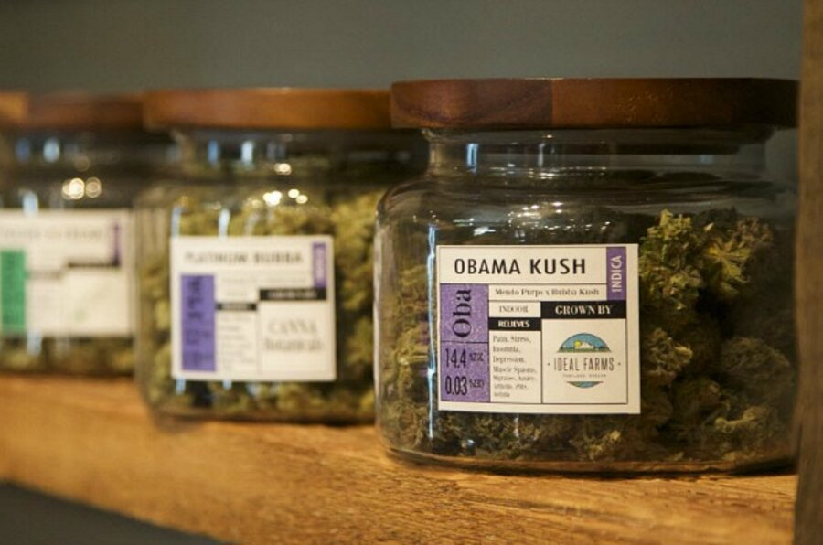 Marijuana: Oregon and Alaska could be next to legalize recreational use