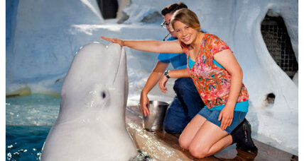 Does Bindi Irwin's modesty defense denote a bigger trend?