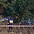 Poland plane crash: Prosecutors open criminal probe into parachuting crash