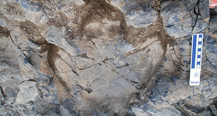 In Alaska, a spectacular trove of dinosaur footprints