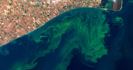 How big will Lake Erie's algae bloom be this summer?