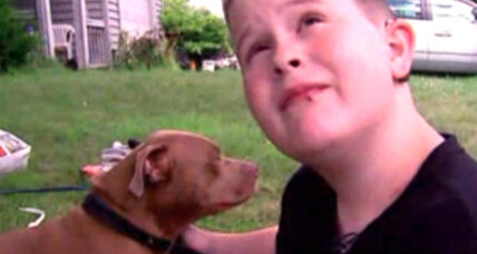 Pit bull hailed as hero for saving deaf boy from fire