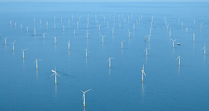 Offshore wind farms becoming seal hunting grounds, say scientists (+video)