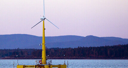 How barnacles put the 'farm' in offshore wind farm