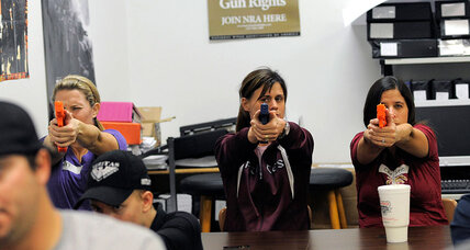 Florida doctors cannot discuss gun safety with patients, says court  (+video)