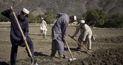 What did $7 billion spent on opium eradication in Afghanistan buy? More opium.