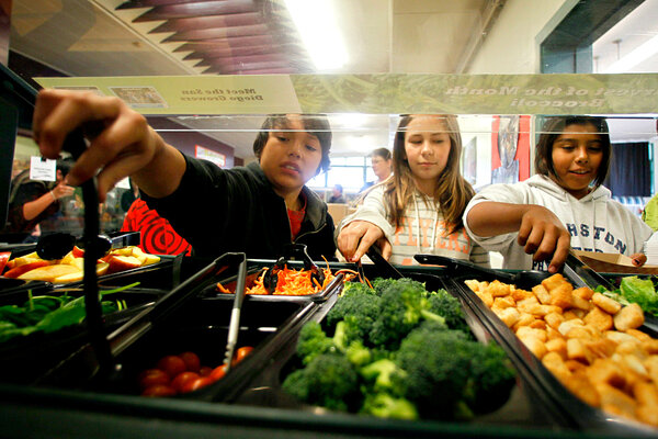 should schools serve fast food like School lunches are not always healthy according to the school health policies and programs study in 2006, 117 percent of elementary schools, 19 percent of middle schools, and 235 percent of high schools included meals from fast food restaurants, such as taco bell and pizza hut, among their.