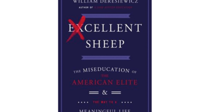 'Excellent Sheep' calls for colleges to reform their admissions process