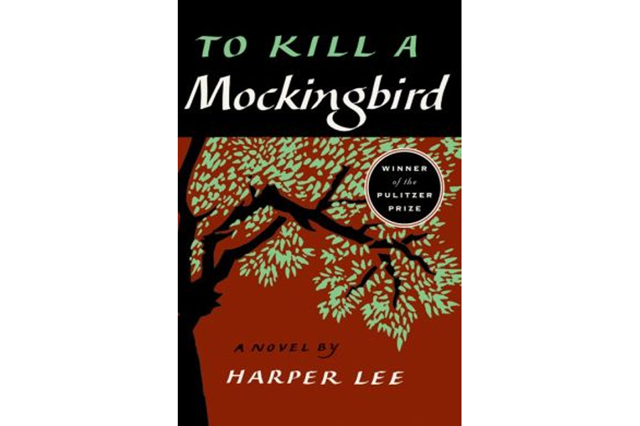 what is the book mockingbird about