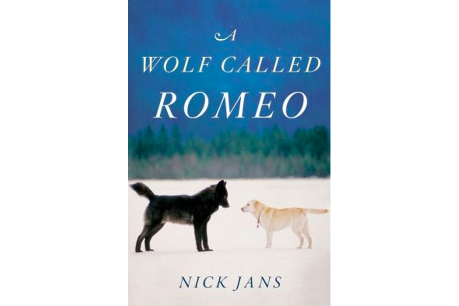 A Wolf Called Romeo Tells The Remarkable Story Of A Wolf And His Human Friends Csmonitor Com