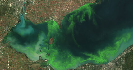 Behind Ohio drinking-water ban, a Lake Erie mystery (+video)