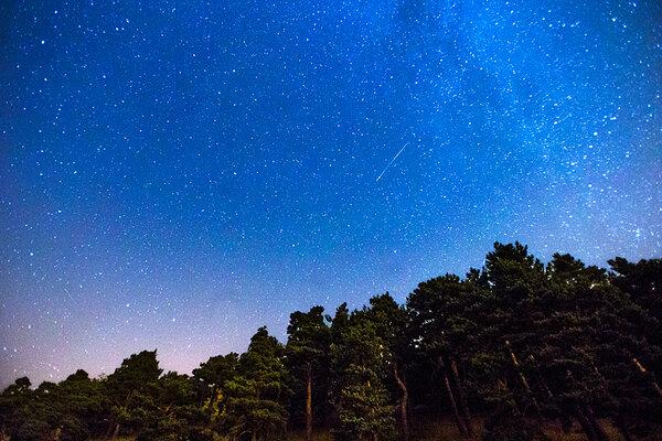 Perseids Meteor Shower Perseid Meteor Shower Peaks