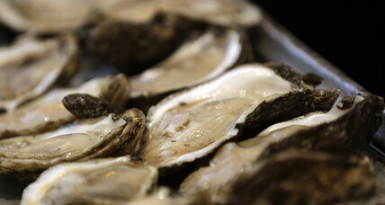 Oil spill: Gulf oysters vanish after 2010 spill