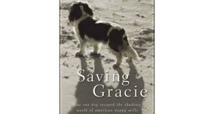 Reader recommendation: Saving Gracie