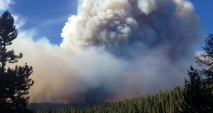 Wildfire grows explosively, state of emergency declared in Calif.