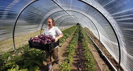 Arctic greenhouse provides locals fresh produce year-round
