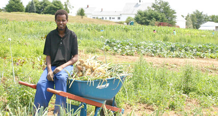 On a Maine farm, African refugees go back to their roots