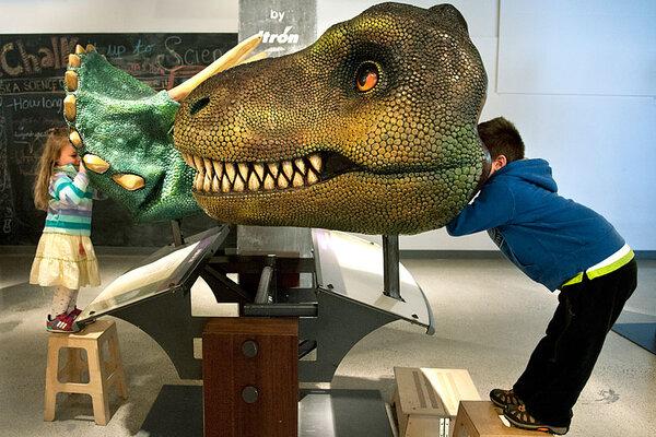 Child looks through a tyrannosaurus rex interactive exhibit as his