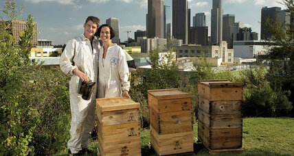 Chelsea and Rob McFarland lure people into a sweet science: urban beekeeping