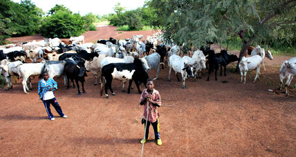 Farmers in Burkina Faso outsmart climate change