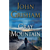 'Gray Mountain' is a satisfying, old-fashioned legal thriller