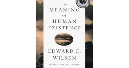 'The Meaning of Human Existence' considers humanity's purpose and place in the grand scheme of things