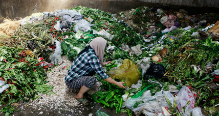 Simple steps could cut world's food waste