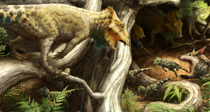 Oldest North American horned dino was the size of a crow, say scientists
