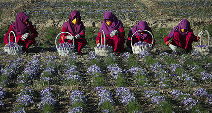 Why gender inequality and food security go hand-in-hand