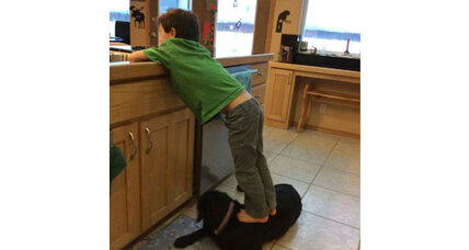 Sarah Palin battles with PETA over dog photo: Whose side is America on? (+video)