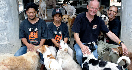John and Gill Dalley battle Thailand's illegal dog meat trade