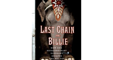 Reader recommendation: Last Chain on Billie