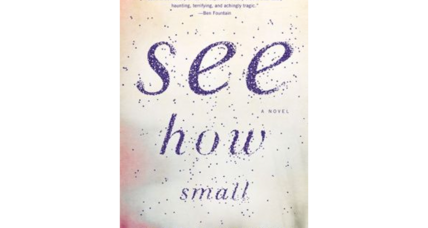 Scott Blackwood's 'See How Small' attracts critical praise