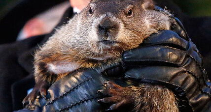 Are the computer models any better than Punxsutawney Phil? (+video)