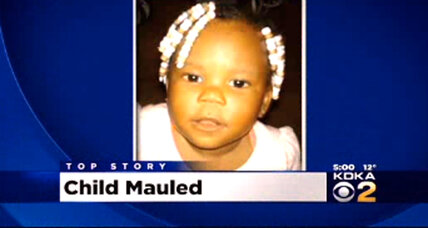 Pit bull kills two-year-old girl near Pittsburgh
