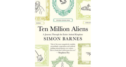 'Ten Million Aliens' celebrates earth's remarkable abundance of perfectly evolved animals