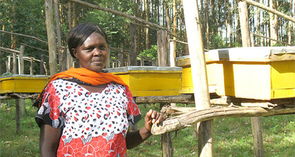 Community groups help save Kenya's vital 'water towers'