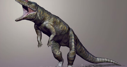 Before dinosaurs ruled, the 'Carolina Butcher' was top croc