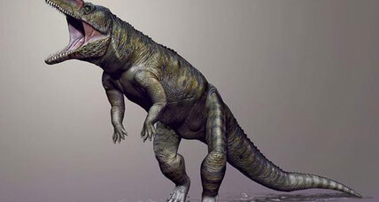 Ancient, 9-foot-long 'butcher' croc walked on two legs