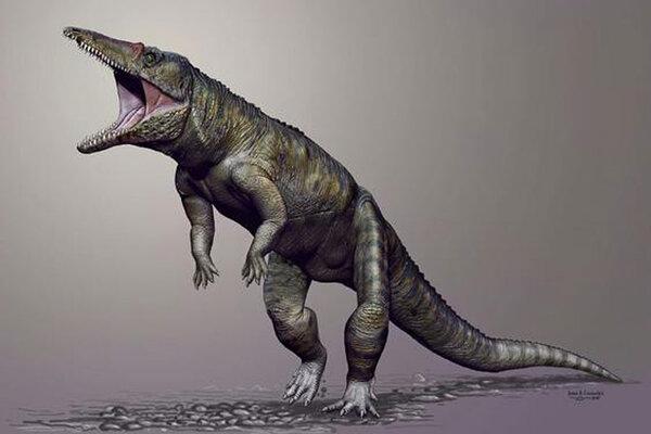 http://images.csmonitor.com/csm/2015/03/0320-ancient-crocodile.jpg?alias=standard_600x400