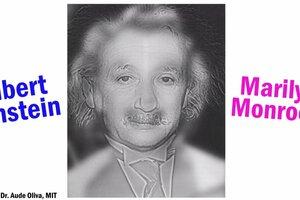 Do you see marilyn monroe or einstein