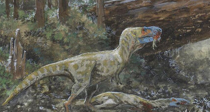 Did Tyrannousaurs eat each other?