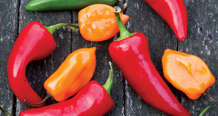Plant a peck of powerful peppers