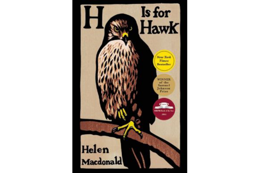 H Is For Hawk Celebrates The Healing Power Of The Wild Csmonitor Com