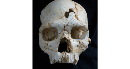 Ancient skull could hold clues to humanity's oldest murder mystery