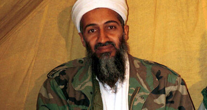 What do bin Laden's books say about him?