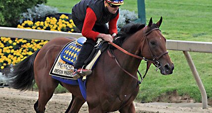 Preakness Stakes 2015: Do eight horses make a better race? (+video)