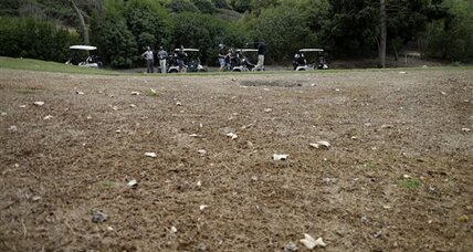 Brown is the new green: How California golf courses respond to drought (+video)