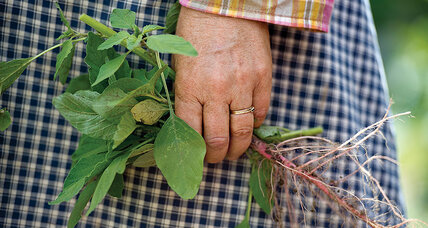 Veteran gardener's tips on weed control
