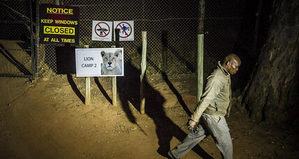 South Africa's Lion Park stays open after woman's death